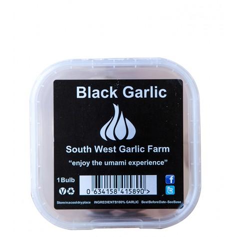 Black Garlic Bulb