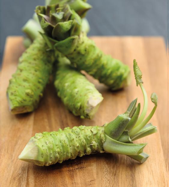 Fresh British Grown Wasabi Grow Your Own The Wasabi